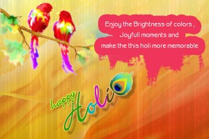Happy Holi 2015 Funny Sms Jokes Memes Trolls